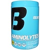 Beast Sports Nutrition, Aminolytes, Pineapple Flavor, 15.08 oz (428 g) (Discontinued Item)