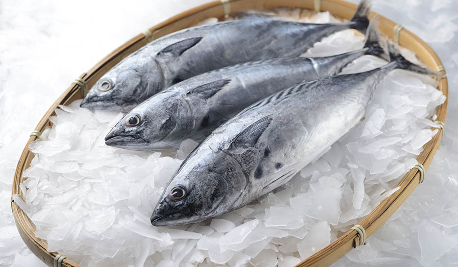 Fish Peptides and Blood Pressure