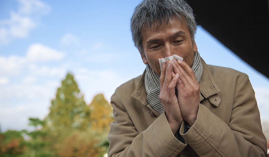 Keep Your Sinuses Healthy