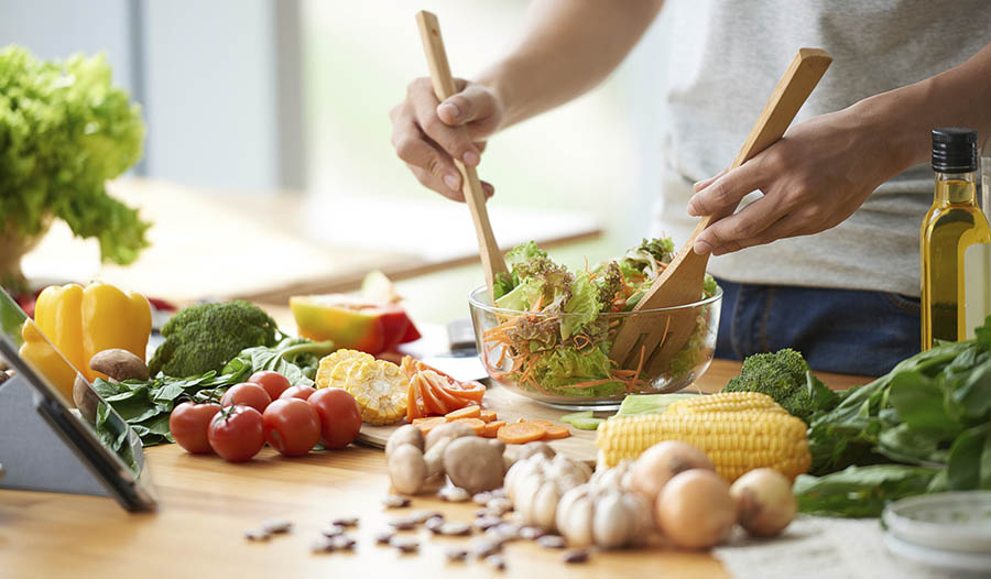 What is the Vegetarian Diet?